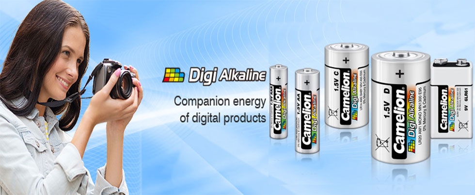 Digi Alkaline Battery