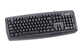 Genius KB-110X Wired Keyboard - PS2 | کیبورد جنیوس